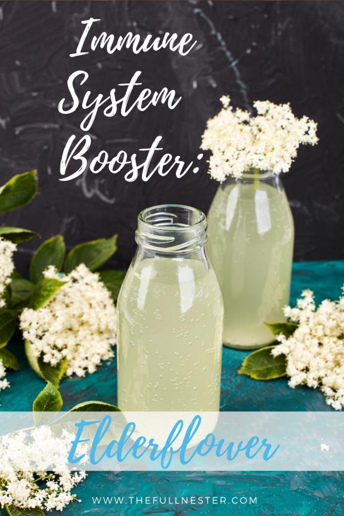 Immune System Booster: Elderflower